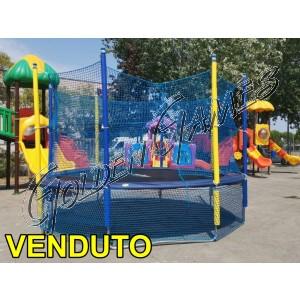 TAPPETO ELASTICO PROFESSIONALE 430 USATO